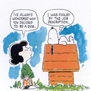 Snoopy Job Description